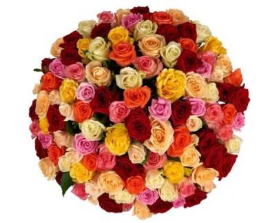 101 роза за 4800